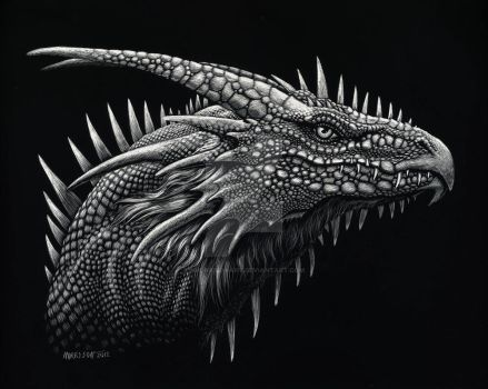 Dragon Lizard by SMorrisonArt