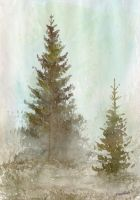 Bog Conifer by Chashirskiy