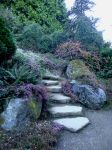 The Stone Steps by Lillagon