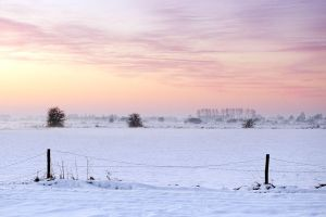 Amerongse Bovenpolder in the winter by lutfiuzun