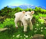 Lamb (toy) by anna142