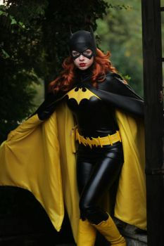 Barbara Gordon - Batgirl XIV by Knightess-Rouge