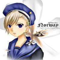 Norway Hetalia by shachan97