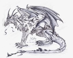 The old Dragon by DamienMuerte