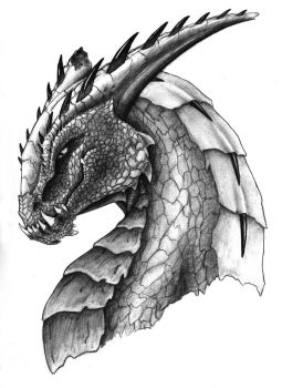 Portrait of a Dragon by Zyenthillias