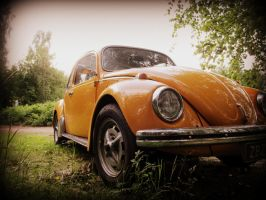 My Beetle 2 by Zils7