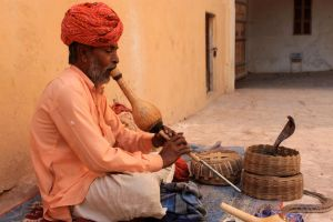 A snake charmer by subcoolandice