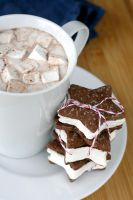 Choc + Almond + Marshmallows 3 by bittykate