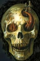 Insect Skull by tallon