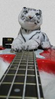 The Tiger and the Bass Guitar by dragaodepapel