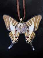 Steampunk Butterfly Movement by xxPRECIOUSMOMENTSxx