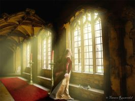 The Letter by tamaraR