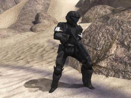 ODST TROOPER ON THE ARK by victortky
