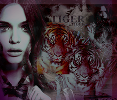 The Tiger by Insolatte