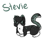 .:Stevie:. by Pika-Pika-Pikahu