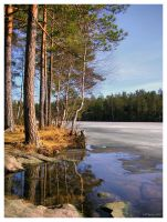 Spring Day by the Lake by Pajunen