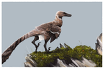 Velociraptor Mongoliensis by Savamther