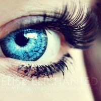 Lash by EliseEnchanted