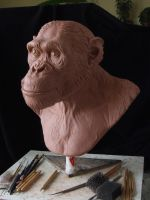 Chimpanzee sculpt. WIP- another angle by revenant-99