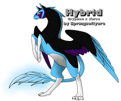 Ravens-Folklore: The Attorney by SpringsofIyore