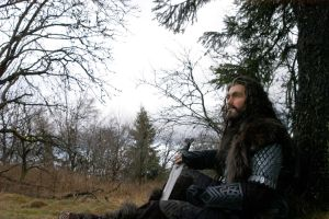 Thorin - Ere Break of Day by Feuerregen