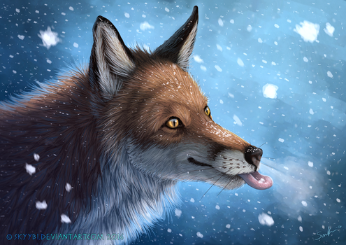 Catching Snowflakes by Skyybi