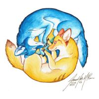 Ying and Yang by Yote