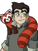 Bolin and Pabu by rongs1234