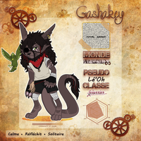 GASHAKEY ~ Le'Oh Charactersheet - V.3 by Niutellat