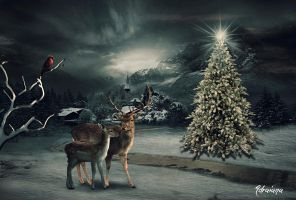 Christmas in the forest by Adriana-Madrid