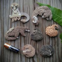 Charity Pangolin Fridge Magnets by demiveemon