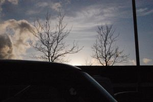 Untitled.worcs#0361 - Two Trees by lifeforceinsoul