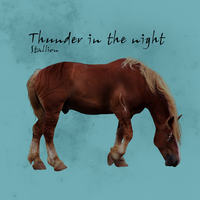 Thunder in the night REF by Roxy-Graphics