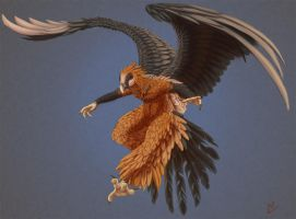 Bearded Vulture by Hexabeast