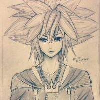 Kingdom Hearts: Adult Sora by Waruta