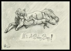 It's a Baby Boy by Leadmare