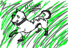 aiden by xxDemonfangxx