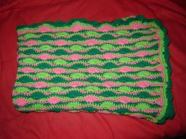 Watermelon Blanket by Ginger-PolitiCat