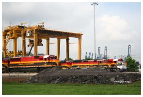 The New Panama Railroad by milagros23