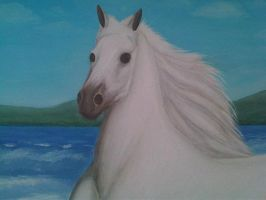 The Horse White 22 by eduaarti