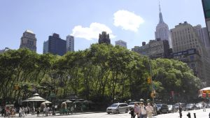 Midtown Park by TheBuggynater