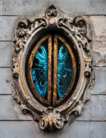 Lepidopterian Window by LuciaConstantin