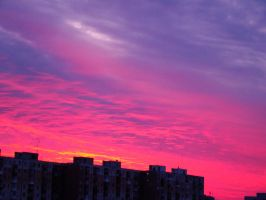 Red sky by 4Andy4
