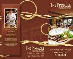 Pinnacle Brochure by backflip540