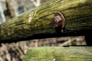 Wood Bolt by JoseAvilaPhotography