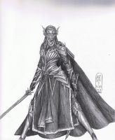 Another Elven Warrior by MyWorld1