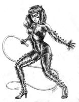 Cat Woman by RubusTheBarbarian