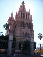 Catedral de San Miguel Allende by Lily-de-Wakabayashi
