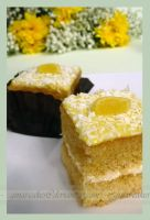 Summer Squares by ginas-cakes