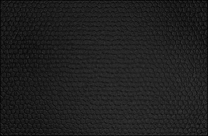 Leather Texture by Nick356